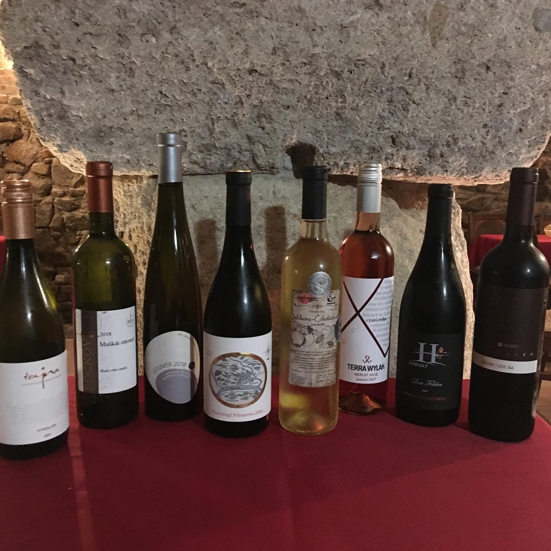 """Projekt """"Patrón vína"""": Časť 2. - Problém učiť sa"""